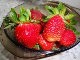 Плодово-ягодные культуры на весну 2018 года
